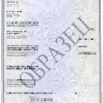 Сертификат соответствия требованиям технического регламента